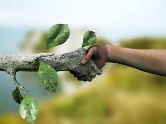 Planos e projetos ambientais